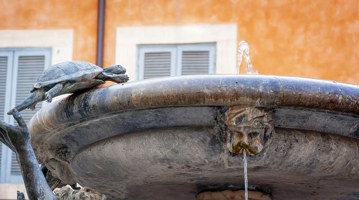 The turtles fountain in Rome