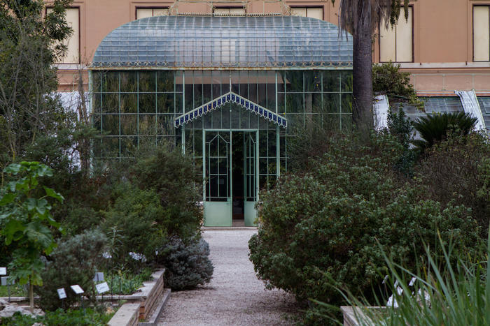a greenhouse in Rome botanical garden